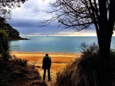 A Soggy Tramper at Te Pukatea Bay
