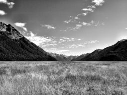 Landscape Near Milford Sound