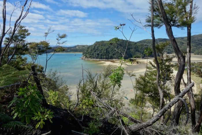 Abel Tasman day 2 5