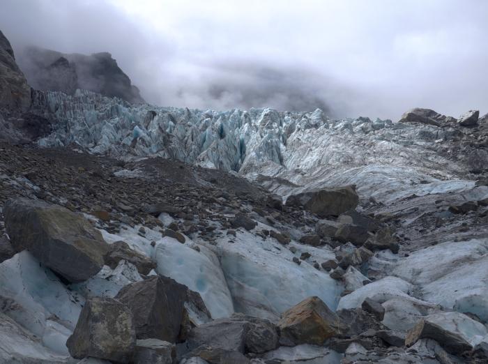 fox glacier blog 12