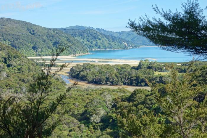 Abel Tasman day 2 cont 6